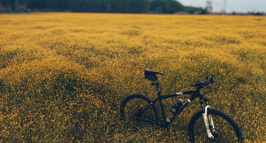Cyklostezka Morkovice – Nezamyslice